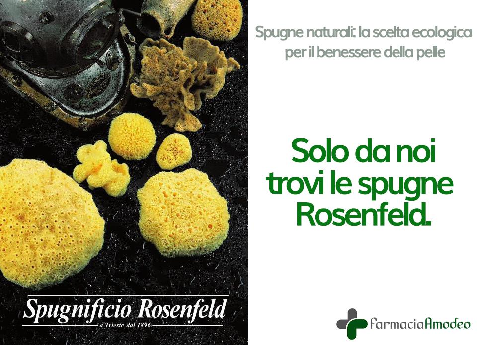 see-sponges-rosenfeld-4